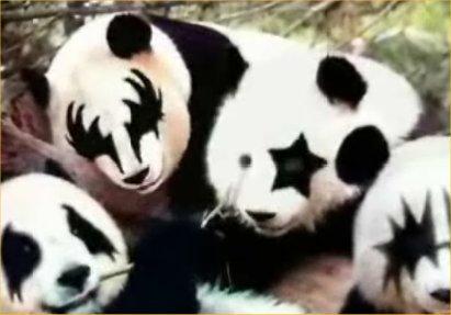 panda-kiss.jpg
